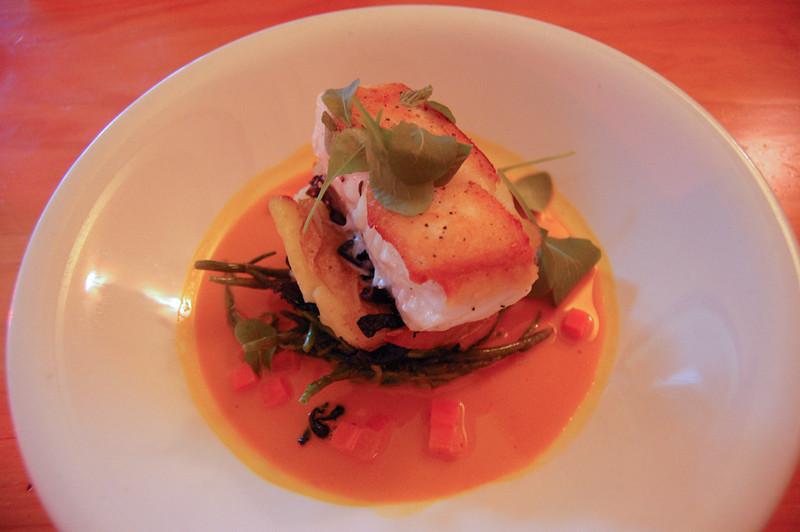salmon dish at aurora bistro
