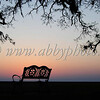Sunset   Old Mandeville Style web