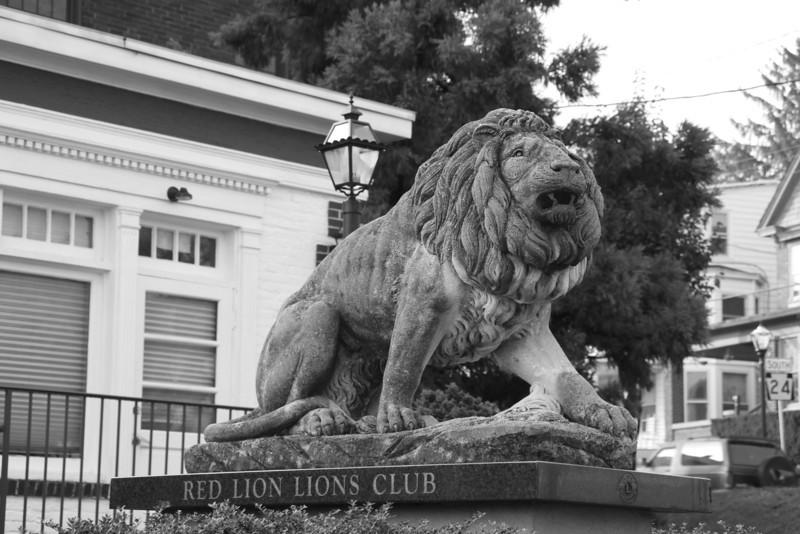 Lion,Red Lion,PA