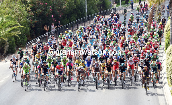 All eyes turn to an attacking MTN rider at the start in Benalmadena...
