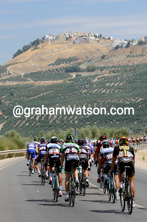 The Vuelta is out of Andalucia, but still encountering a few million olives along the way...