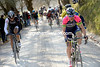 Damiano Cunego lanches a counter-attack with Kreuziger and Cancellara...