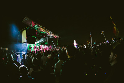 scamp13_049