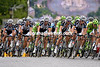 The Giant-Shimano team moves to the front to thwart this threat to a stage-win...