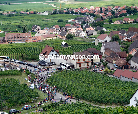 The view from the Markstein is of those cool, refreshing Alsace wines - and the Tour peloton..!