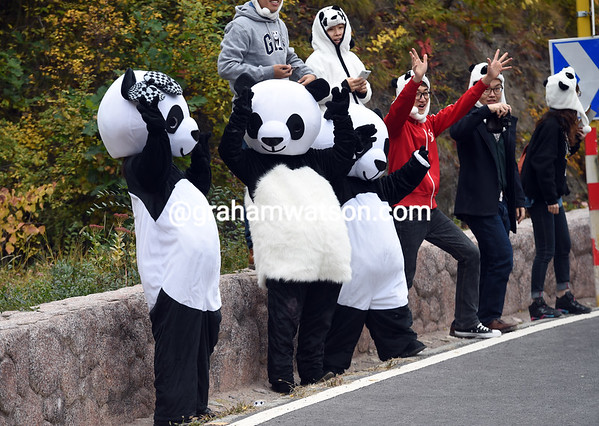 Panda, panda, everywhere - some local Chinese fans salute the race on the Cang Mi Gu Dao climb...