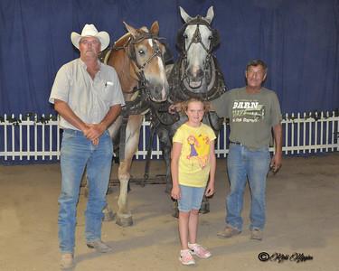 HORSE PULL WINNERS