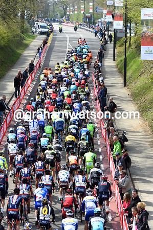 BMC leada a gentile peloton on its first climb of the Cauberg...