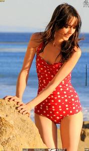 matador swimsuit malibu model 668..00