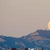 malibu_moon 204.84354