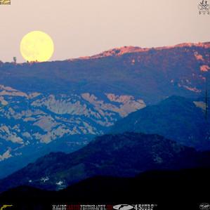 malibu_moon 203.945605.095