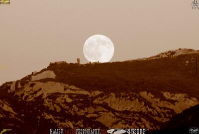 malibu_moon 203.0945656