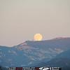 malibu_moon 204.0345