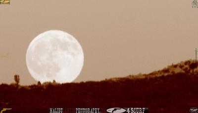 malibu_moon 203.345