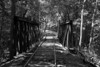 This rare,historic iron bridge was purchased used from another railroad. It is disturbing that this may be scrapped,only to be turned into more Made in China junk.....