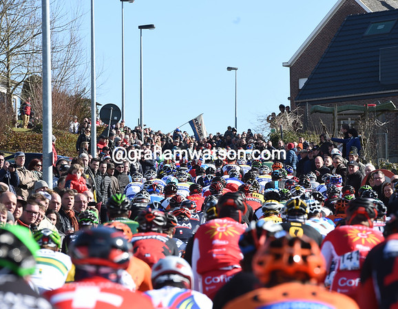 The peloton climbs the Berendries in front of thousands of fans...