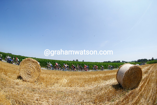 The peloton blasts out into the countryside on another beautiful day...