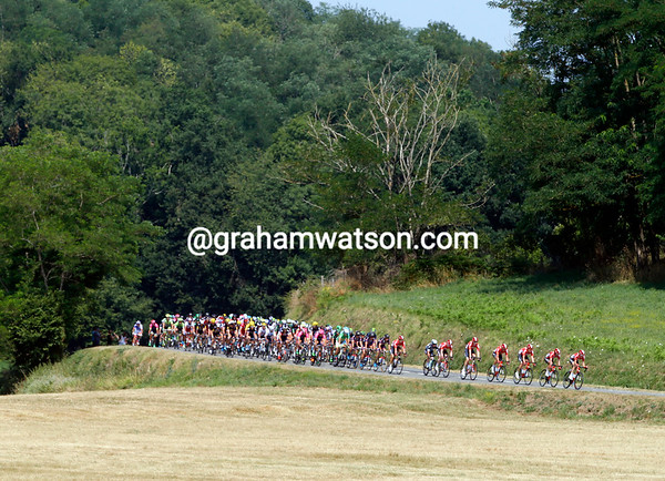 Lotto leads the peloton out into the Midi-Pyrenees in control of the race for Andre Greipel and the up-coming points sprint...