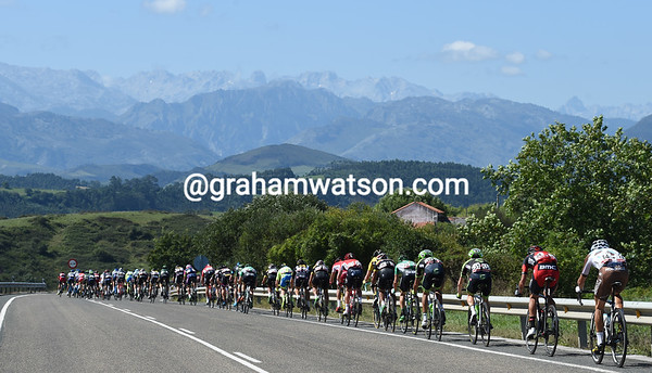 The peloton is long and fast as it races towards the Asturian mountains...