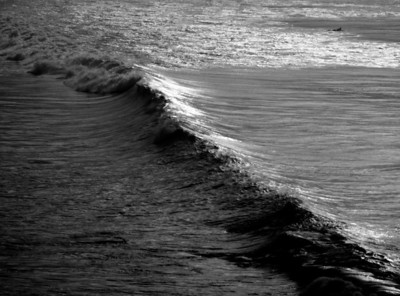Paddle Out. Digital Photo. Print available on paper or aluminum.