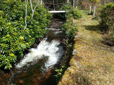 Appin Lodge Stream (Mobile Phone)