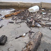 flood_debris04