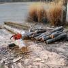 firewood002