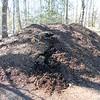 Compost2016-17_02
