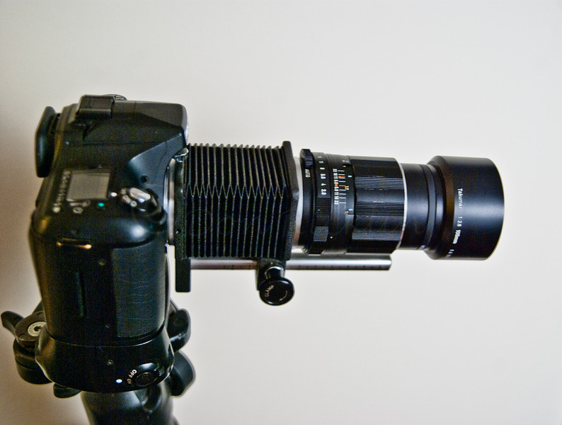 My 'New' manual Macro Lens set-up.