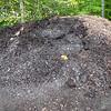 Compost2016-17_07