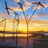 (2391) Port Fairy, Victoria, Australia