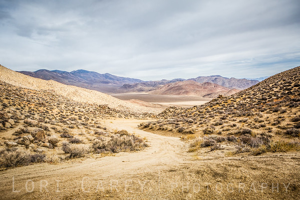 View of Butte Valley from Mengel Pass, Death Valley National Park