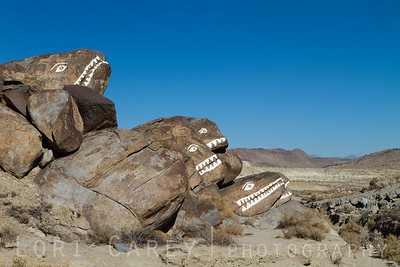 Fish Rocks in Poison Canyon near Trona,California