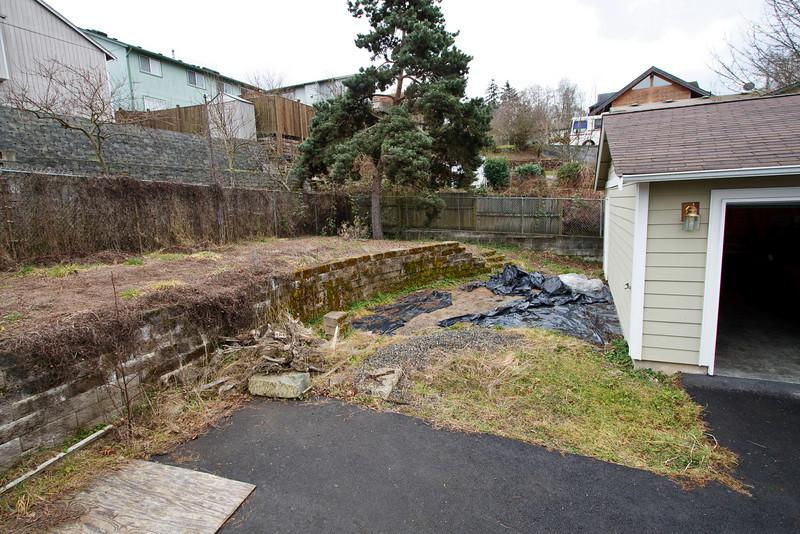 Backyard prior to renovation