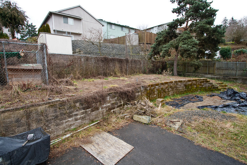Backyard prior to renovation