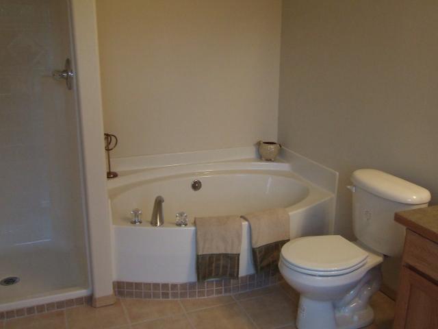 Master bath.  Tub is a soaking tub, no jets.