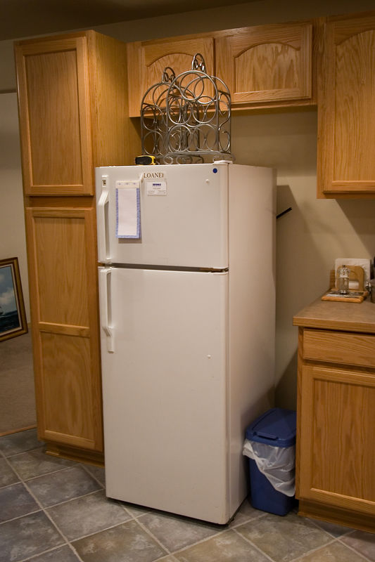 """""""Loaner"""" - the smallest refrigerator in the world"""