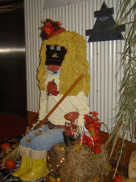 """Fall Time  """"Rita Recycle""""   Kays Dept. project at the College"""