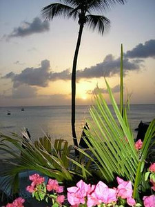 Special Island  Sunset on Barbados