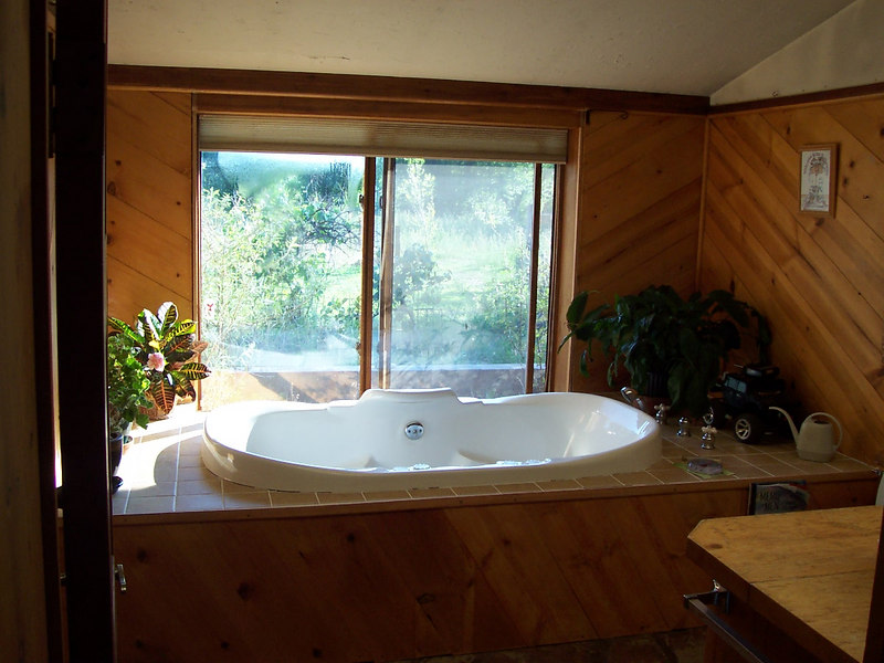 The luxurious garden bath jacuzzi with a big window looking into the back yard.