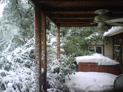 'Tis the season.... early snow damage 10/12/08