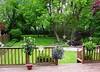 backyard86