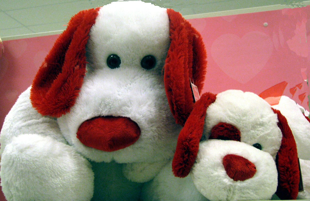 Snoopy- Clemmie