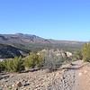 Atop the mesa at Tent Rocks.