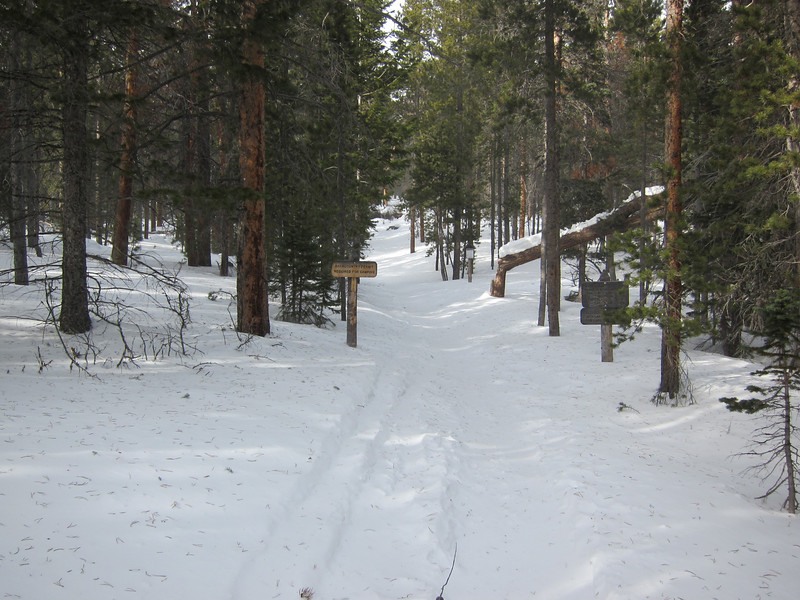 Allenspark Trail, winter of 2011.