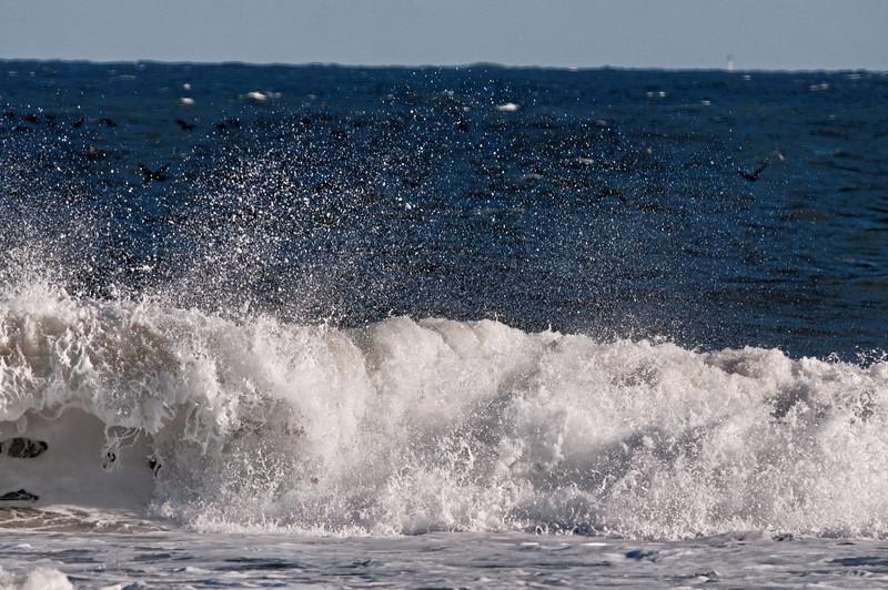 Ocean Spray II