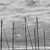Manteo Masts