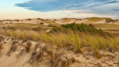 Gardner.Judith.Provincetown Dunes