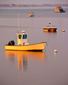Gardner.Judith.Provincetown Boats in Sunset