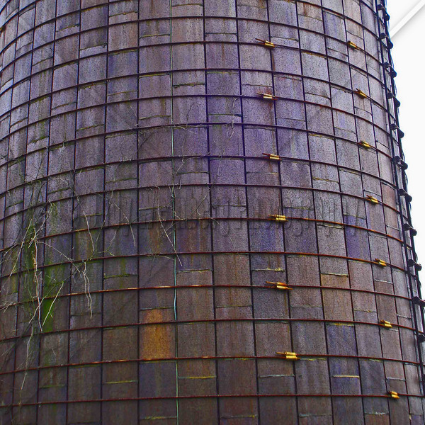 Purple Silo Monkey